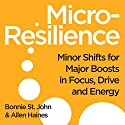 Micro-Resilience Audiobook by Bonnie St. John, Allen P. Haines Narrated by Bonnie St. John, Allen P. Hayes