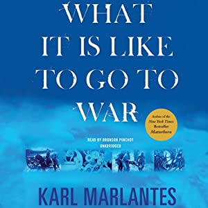 What It Is Like to Go to War Audiobook