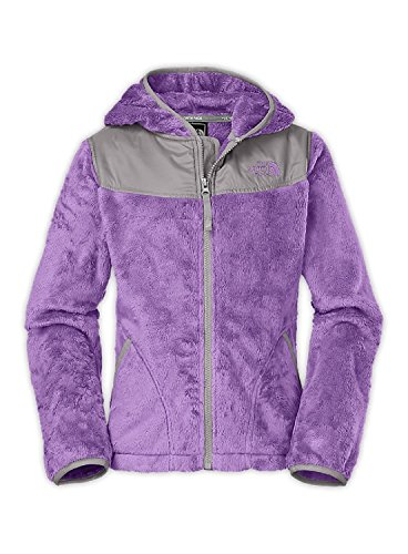 The Oso Hoodie By The North Face In Peri Purple (Y2S)