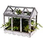 Greenhouse Planter Table Decoration