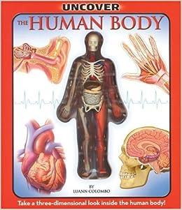 Human anatomy skeletal system car interior design for Colombo design amazon
