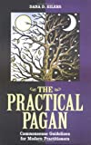 img - for Practical Pagan book / textbook / text book