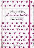 Image de Hinfallen, aufstehen, Krönchen richten - Terminkalender 2017