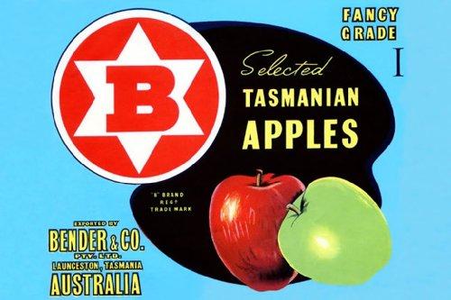 Bender Tasmanian Apples - Fancy Grade I, 32X48 Canvas Giclée, Gallery Wrap, Office Size front-991790