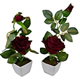 Thefancymart Set Of 2 Piece Artifical Rose Plants With Pots Style Code -10
