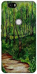 The Racoon Grip #trees hard plastic printed back case / cover for Huawei Nexus 6P