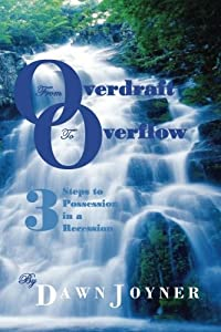 From Overdraft to Overflow: 3 Steps to Possession in a Recession download ebook