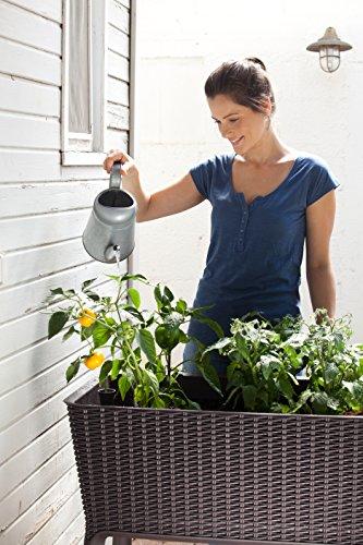 Keter-17194592-Hochbeet-Easy-Growing-Rattanoptik-Kunststoff-braun