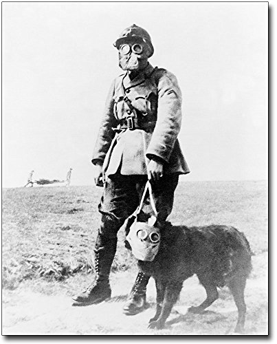 WWI French Soldier & Dog Gas Mask 11x14 Silver Halide Photo Print (Gas Mask Picture compare prices)
