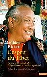 L'esprit du Tibet (French Edition) (2020497689) by Ricard, Matthieu
