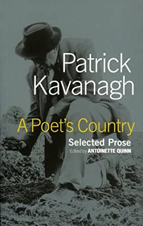patrick kavanagh's poetry An overview of patrick kavanagh's poetry those hungry hills in chapter 3 of his novel tarry flynn, kavanagh describes a summer sunset and.