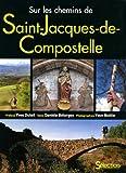 echange, troc Danièle Bélorgey - Sur chemins de Saint-Jacques