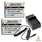 Two Halcyon 1270 mAH Lithium Ion Replacement Battery and Charger Kit for Olympus LI90B and Olympus Tough TG-2 iHS, TG-1 iHS, Olympus Stylus XZ-2 iHS, SH-50 Digital Camera