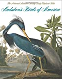 Audubons Birds of America: The Audubon Society Baby Elephant Folio