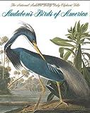 Audubons Birds of America: The Audubon Society Baby Elephant Folio