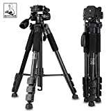 Dpotorpadp SYS-118 Alluminum Alloy Lightweight Travel Tripod ,Compact Camera Tripod with 3-Way Pan Head for Canon Sony Nikon Panasonic Olympus Fuji Camera