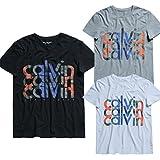 カルバンクライン Calvin Klein Tシャツ 半袖 クルーネック ロゴプリント メンズ 並行輸入品 VITA530