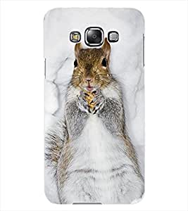 ColourCraft Cute squirrel Design Back Case Cover for SAMSUNG GALAXY GRAND 3