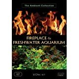 Fireplace & Freshwater Aquariumby Tony Helsloot