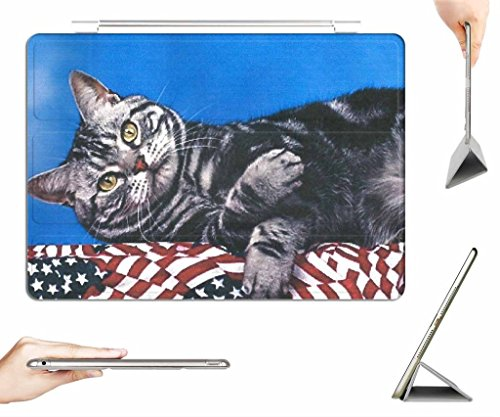 irocket-ipad-mini-4-case-transparent-back-cover-a-cat-laying-on-a-bunning-auto-wake-sleep-function