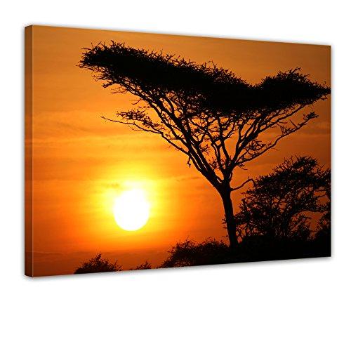 "Bilderdepot24 Leinwandbild ""Akazienbaum im Sonnenuntergang, Tanzania Serengeti Afrika"" - 70x50 cm 1 teilig - fertig gerahmt, direkt vom Hersteller"