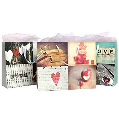 Birthday / Anniversary / Briday Shower Love Artistic Gift Bags and Tissues (Assortment of 3 Giftbags)