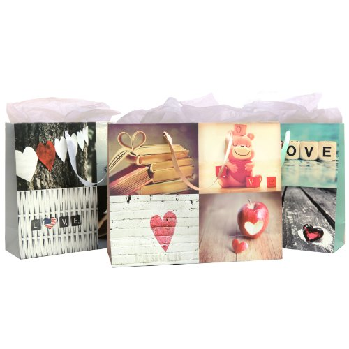 Birthday / Anniversary / Briday Shower Love Artistic Gift Bags And Tissues (Assortment Of 3 Giftbags) front-903216