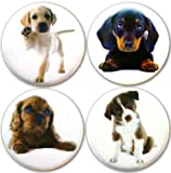 51grfwaAH L. SL160  Henry the Buttonsmith Puppies Magnet Set