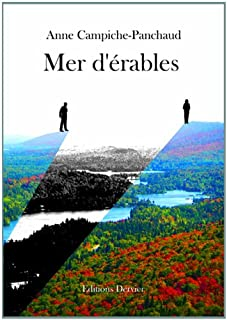 Mer d'érables : [roman]