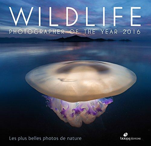 Wildlife photographer of the year 2016 : Les plus belles photos de nature