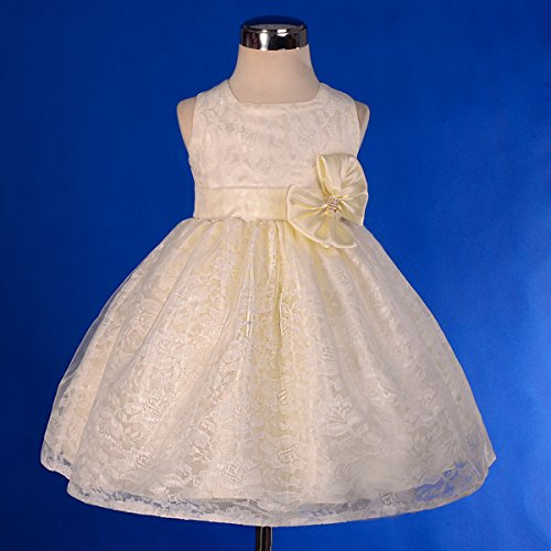 Dressy daisy baby girls 39 floral lace overlay flower girl for 12 month dresses for wedding