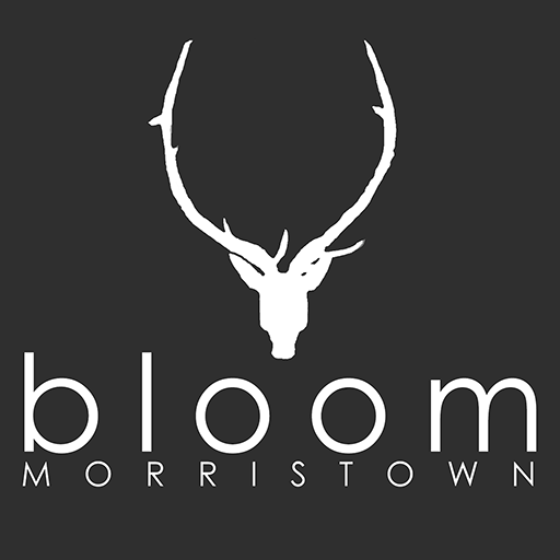 Bloom Morristown (Webappclouds Llc compare prices)