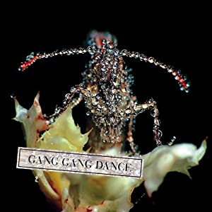 Gang Gang Dance - Eye Contact 51gsbwet7NL._SL500_AA300_