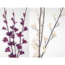 Sword Lilies 40