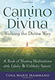 Image of Camino Divina--Walking the Divine Way: A Book of Moving Meditations with Likely and Unlikely Saints