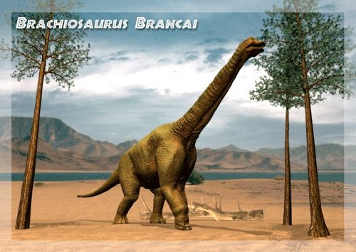 Authentic Collection Ankylosaurus and Brachiosaurus-3D Lenticular Postcard Set (Pack of 3)