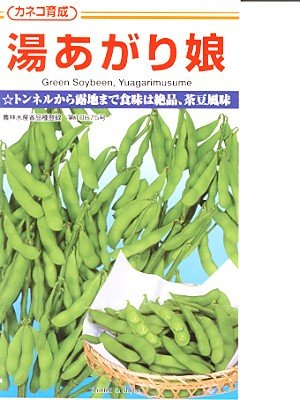 カネコ種苗 湯あがり娘(枝豆) 20粒入