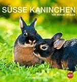 Süße Kaninchen Postkartenkalender 2015