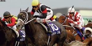 オーナーズホース/OWNERS HORSE【カレンチャン】OH01-H009
