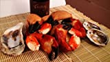 Frozen Large Stone Crab Claws - 3lbs
