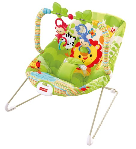 Discover Bargain Fisher-Price Baby Bouncer, Rainforest Friends