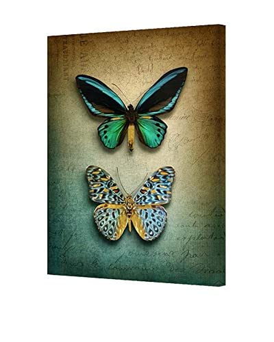 Living in a country house Wandbild Butterfly