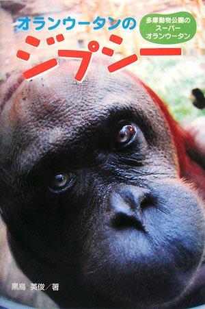 オランウータンのジプシー (ポプラ社ノンフィクション)