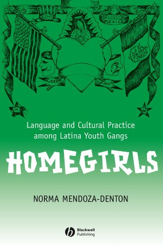 Homegirls: Language and Cultural Practice Among Latina Youth Gangs (New Directions in Ethnography) (Latinas In North America compare prices)