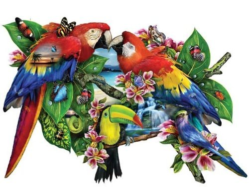 51guo rTVdL Reviews Parrots in Paradise Shaped 1000 pc