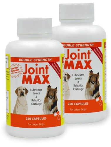 Glucosamine Ds With Chondroitin