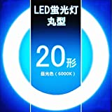 led蛍光灯 丸型20w形 昼光色 ledサークライン¢205mm G10q 20W型 グロー式工事不要 (20形, 昼光色)