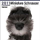 THE DOG ミニチュア・シュナウザー  2011年カレンダー