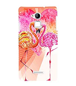 PrintVisa Love Hearts Colorful Birds 3D Hard Polycarbonate Designer Back Case Cover for Coolpad Note 3