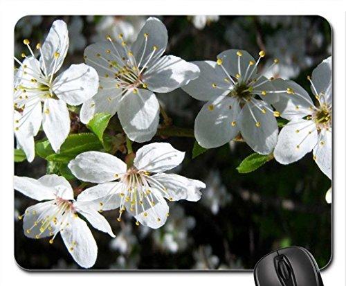 fioritura-alberi-mouse-pad-mousepad